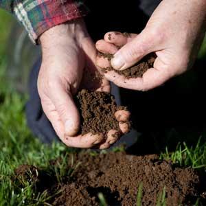 farrow soil